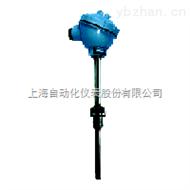 耐磨热电偶WRNN-631