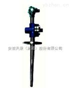 WRN-740化工厂专用热电偶WRN-740