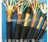 计算机电缆ZR-DJYPVP2