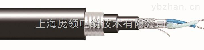 22AWG 双屏蔽(铝箔+编织)钢带铠装 RS485 电缆