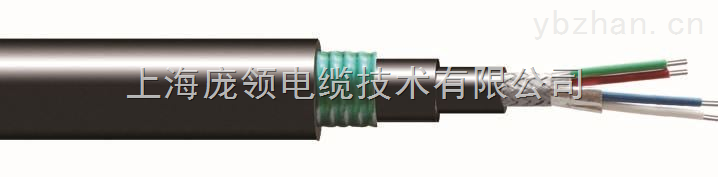 22AWG 单独屏蔽 +总屏蔽 钢带铠装 低烟无卤阻燃 RS485 电缆