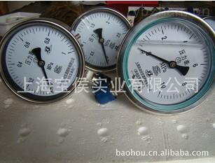 供應YBF系列防腐防震不銹鋼壓力表