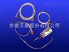 WZP-205S热电阻WZP2-205S中国驰名商标产品