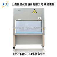 BSC-1300IIB2生物安全柜技术参数 产品图片
