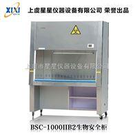 BSC-1000IIB2半排风生物安全柜注意事项 产品维护