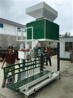 HG大豆定量包装机