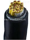 VGG22丁硅软电缆