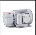 无油式真空泵,VACUTRONICS.DP-120V