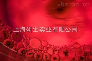 人B淋巴細胞白血病細胞;BALL-1說明