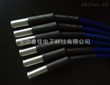 廠家直銷TJ-WDXB系列溫度傳感器