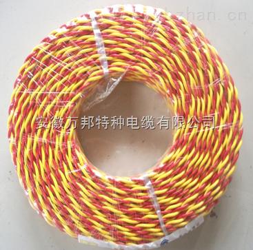 WDZN-RYJ-2*4清洁环保电缆