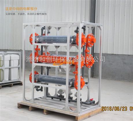 300g电解食盐消毒设备/农村次氯酸钠发生器