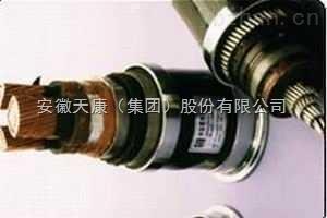 BPGVFPP2、BPYJVP3-高温高压特种变频电缆价格