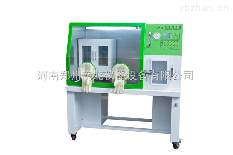 YQX-Ⅱ厭氧培養箱价格价格