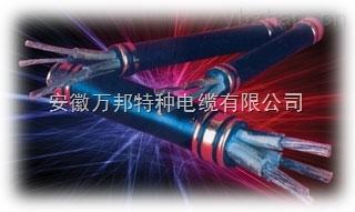 耐高温防火电缆NH-FF,NH-FF22