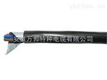FF22高温铠装电缆*ZR-FFRP耐高温电缆