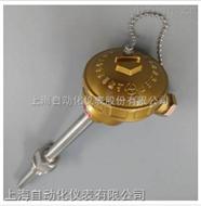 上海自動化儀表三廠WREK-1313多點鎧裝熱電偶