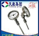 WSSE-580带热电偶双金属温度计