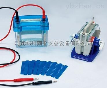 DYCP-31CN型琼脂糖水平电泳仪(小号)