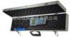 HDD-Ⅱ型高精度数字温度仪