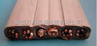 WDZ-(TVVBG-STP+RVV)扁平组合电缆