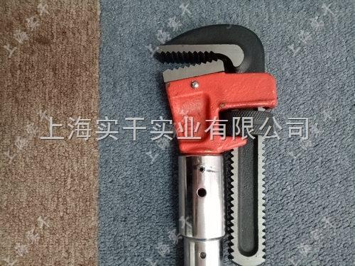 上海20-100N.m可换头的电子扭力扳手