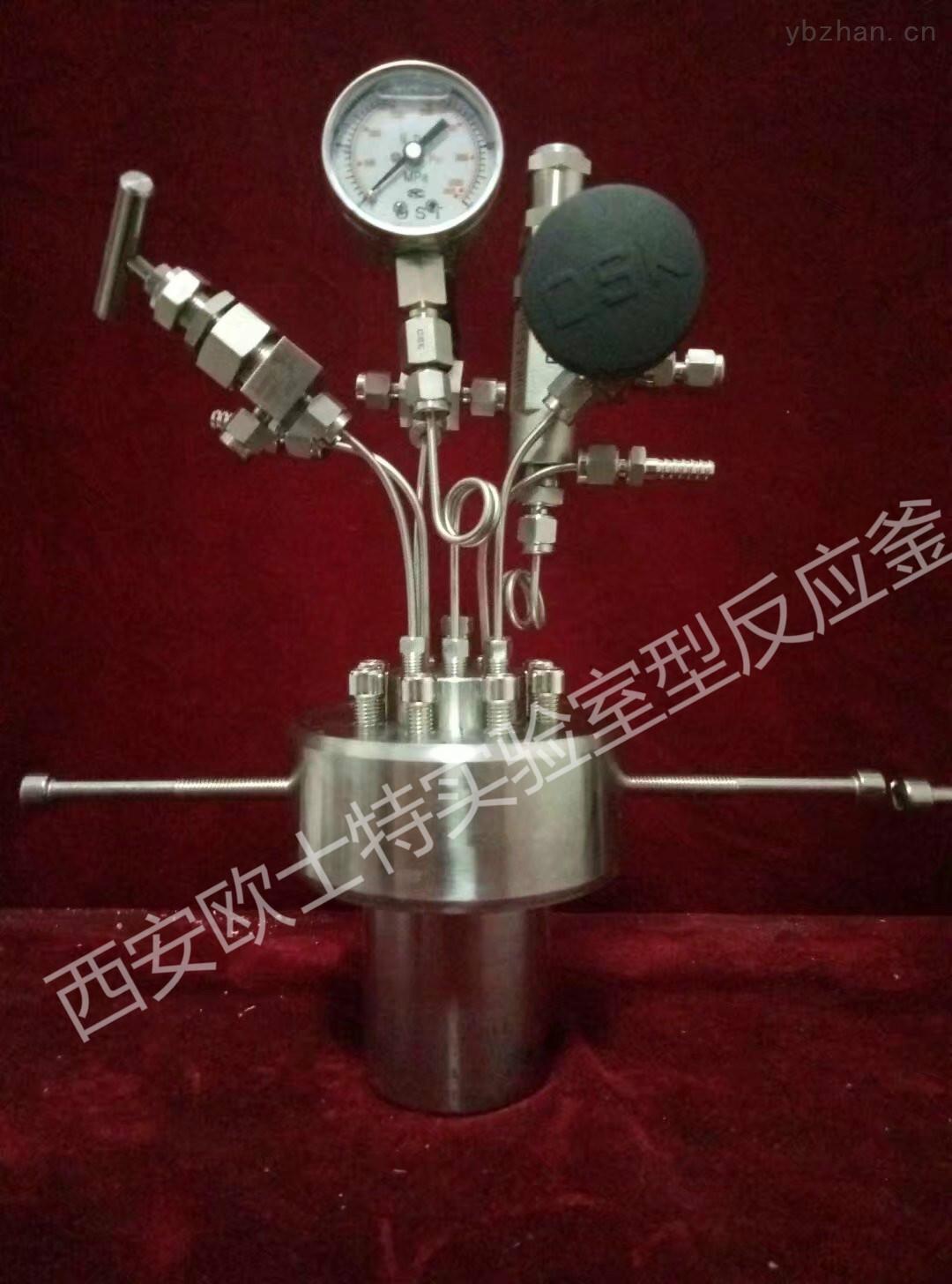实验室反应釜/微型高压反应釜