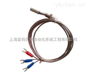 WZPM-201端面热电阻