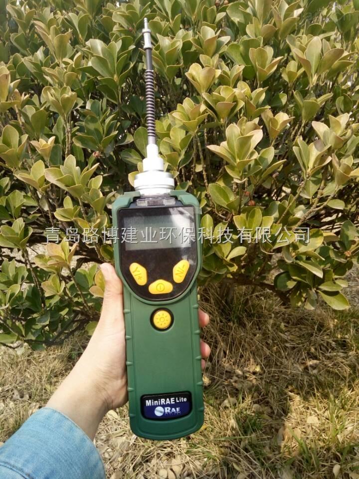 美国华瑞基本型voc气体检测仪
