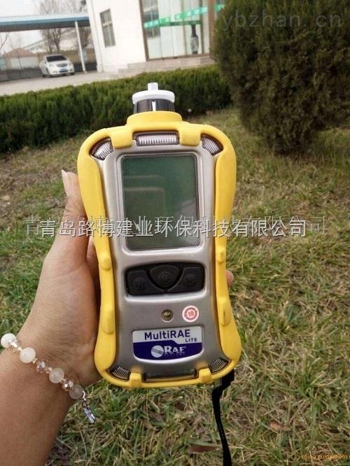 多组分有害气体检测仪美国华瑞PGM-6208