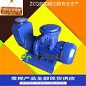 ZCQ自吸式無泄漏磁力泵
