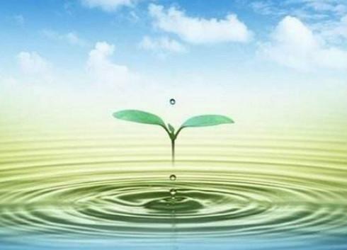 中国计量协会智能水表技术工作组第五次会议召开