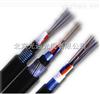 GYTA53GYTA53直埋光缆生产厂家